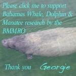 Georgie Manatee BMMRO SUPPORT LOGO