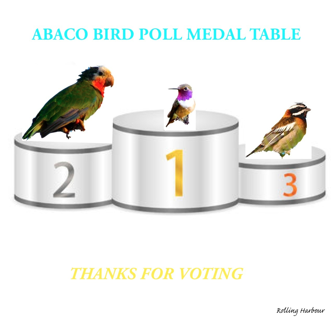 BIRD POLL FV2