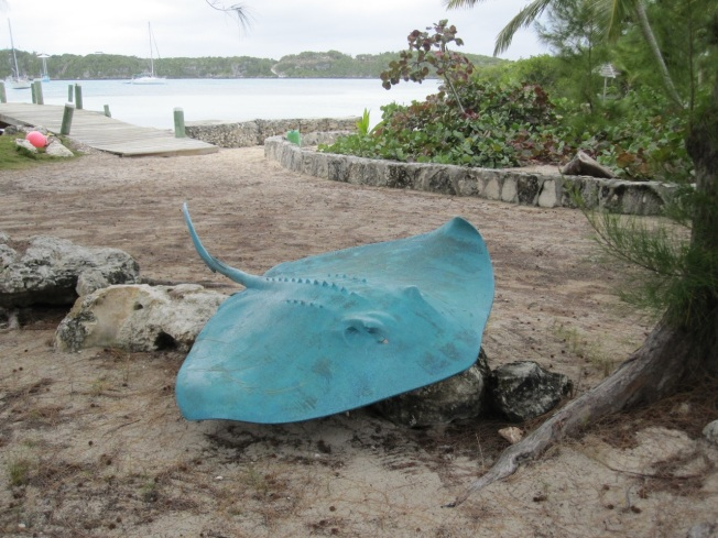 Bronze Stingray, Little Harbour, Abaco Bahamas (π Rolling Harbour)