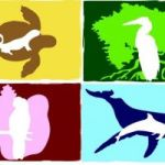 Friends of the Environment (Abaco) logo