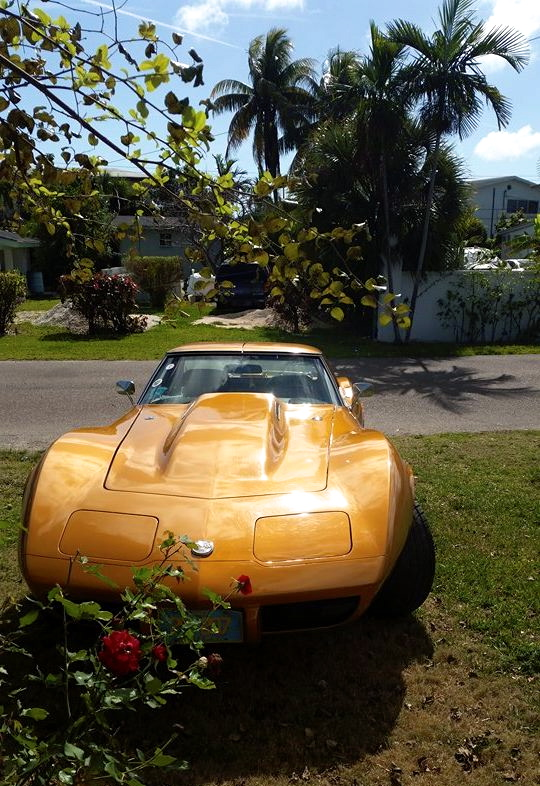 Corvette, Bahama Yellow (Abaco - Ellsworth Watkins)
