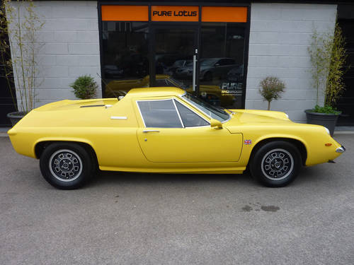 Yellow Lotus Europa | ROLLING HARBOUR ABACO