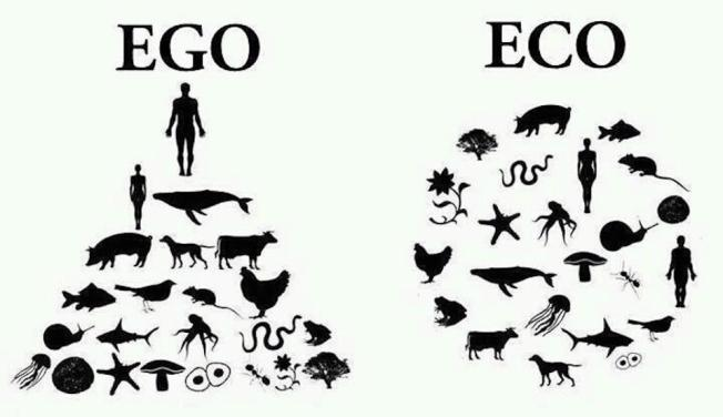 EGO -ECO graphic