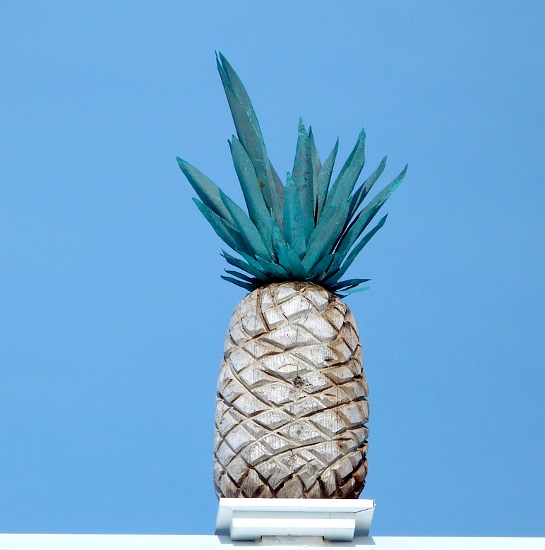 Pineapples Symbols Of Welcome Wealth Also Delicious Rolling