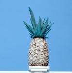 DCB Pineapple Crop