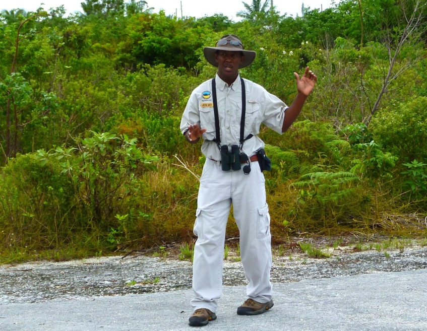 Ricky Johnson Pishing Woodstars Crossing Rocks Abaco