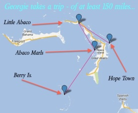 Georgie Manatee's direct route to Abaco