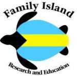 Bahamas Sea Turtle Research Logo