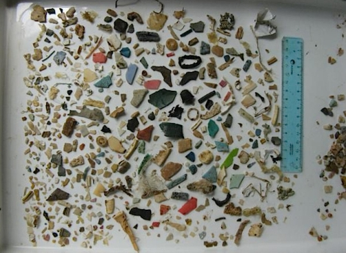 http://www.wired.com/wiredscience/2011/03/sea-turtle-plastic/