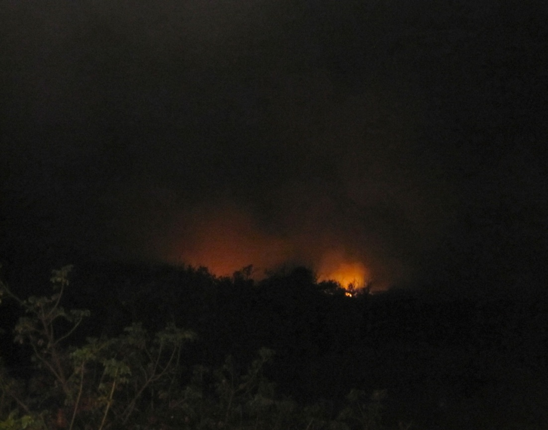 Forest Fires, Abaco 3