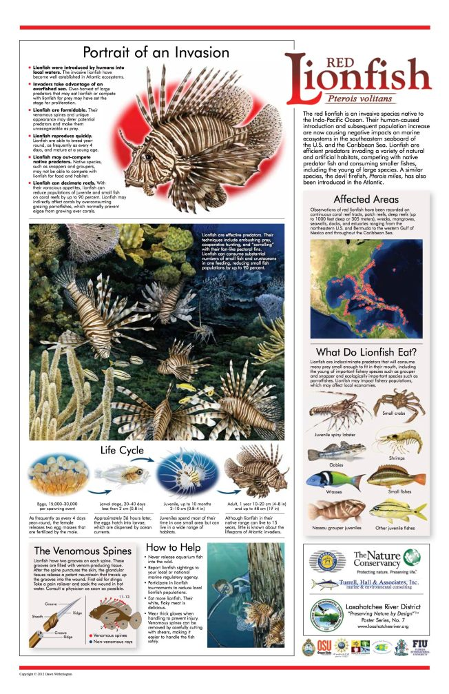 Loxahatchee River District Lionfish Poster