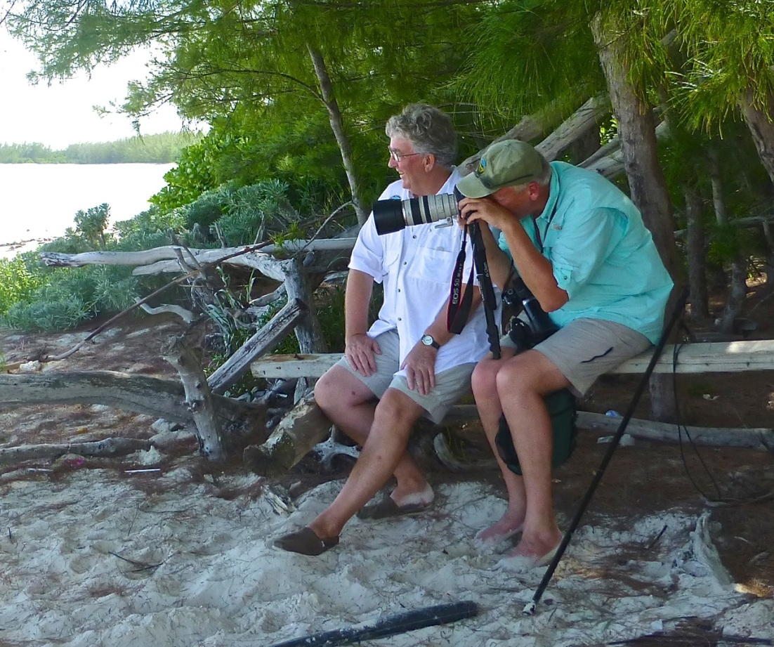 Wildlife Photography on Abaco 10