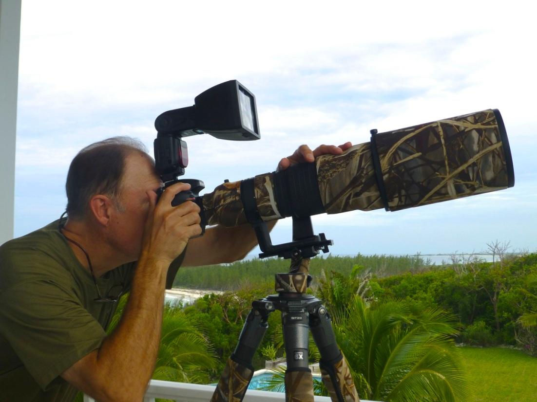 Wildlife Photography on Abaco 11