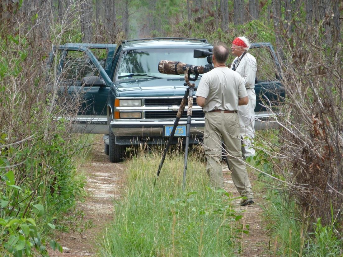 Wildlife Photography on Abaco 13
