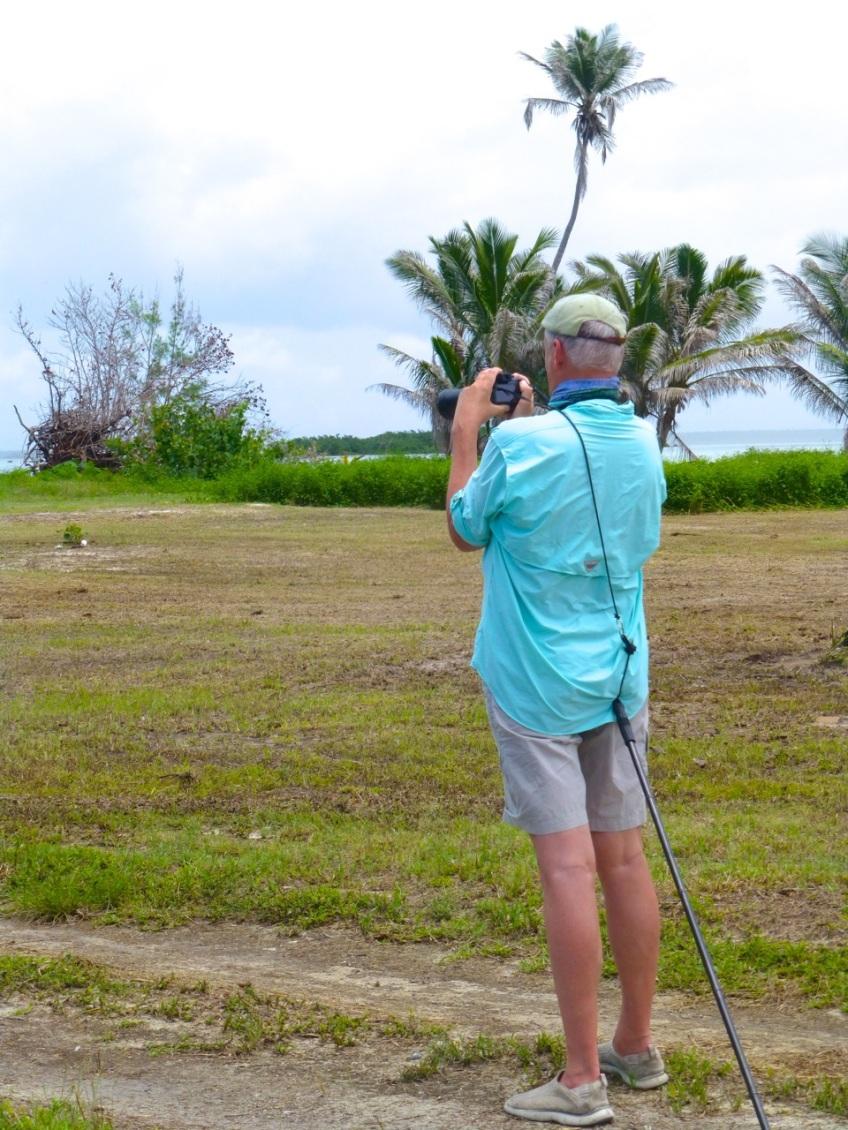 Wildlife Photography on Abaco 8