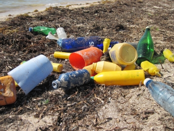 2014_CCC_Marine debris (plastic) that washed up on Elliott Key