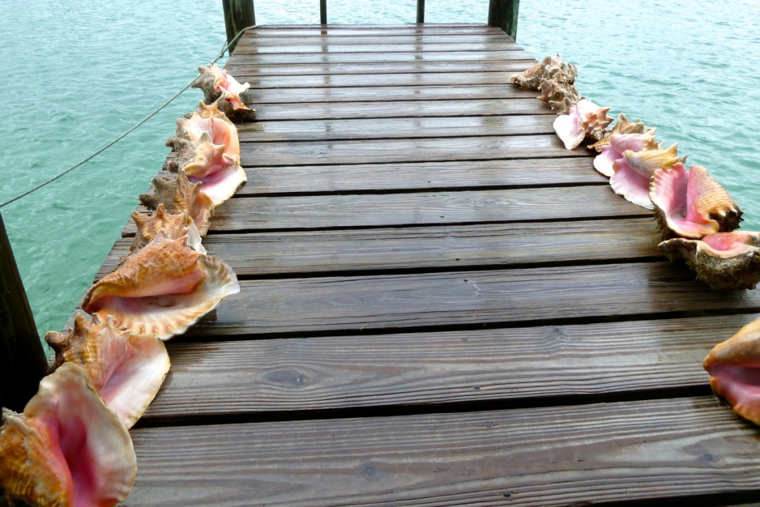 Conch Man 'o War Cay jetty Abaco