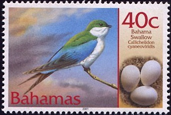 bahama-swallow-stamp