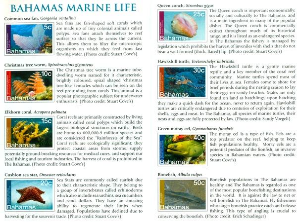 Bahamas Marine Life Stamps 2012