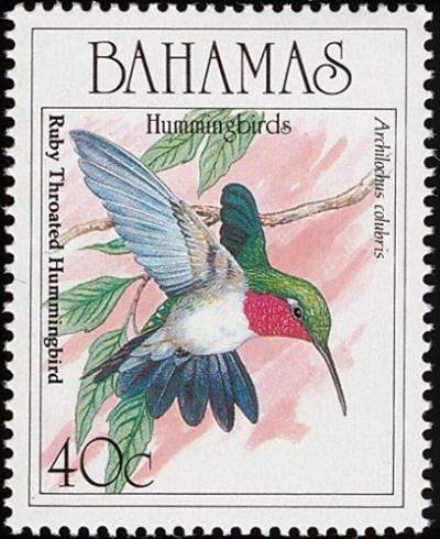 Bahamas Hummingbird Stamp