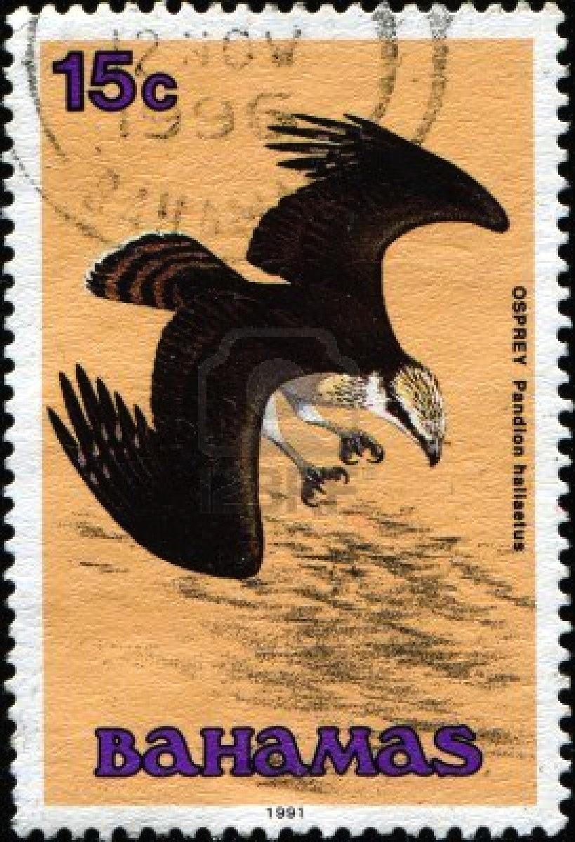 Bahamas Wildlife Stamp Osprey