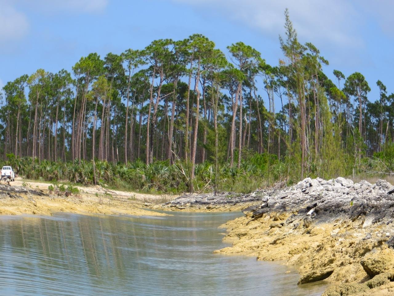 Nettie's Point, Abaco - channel water phenomenon