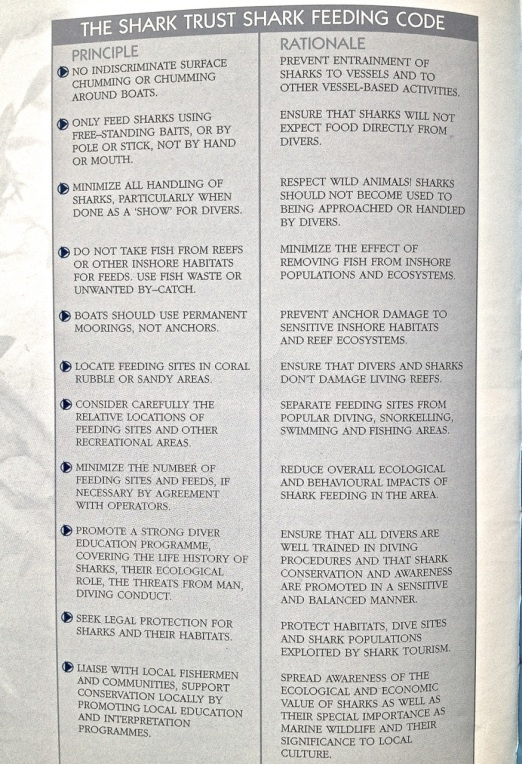 Shark Book 8
