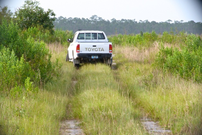 Toyota Truck, Abaco Backcountry