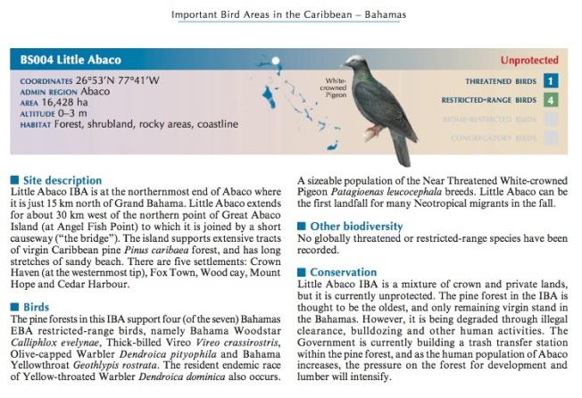 BNT BIRD ARTICLE 5 JPG