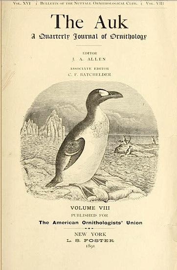 The Auk 1891