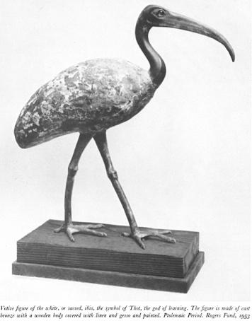 Ibis Met Museum 2