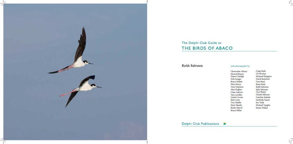 The Birds of Abaco by Keith Salvesen