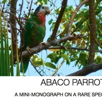THE UNIQUE ABACO PARROT: ITS PAST, PRESENT & FUTURE