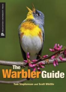 Warbler_Guide