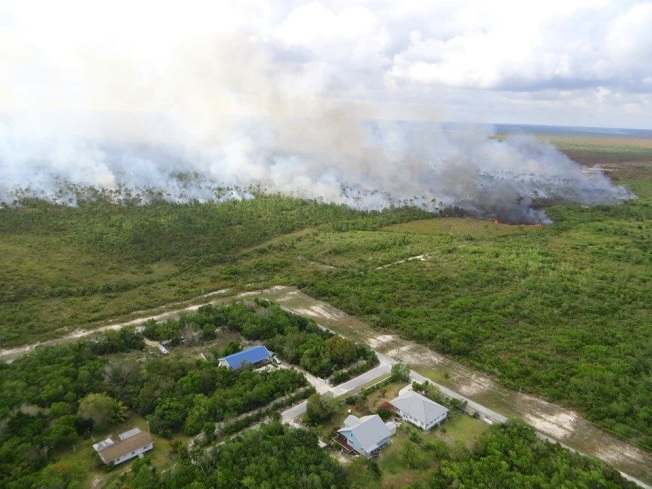 Forest fire, BPS, Abaco (David Rees)