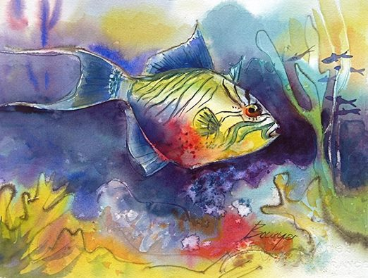 Triggerfish - Brigitte Bowyer Carey - Island Watercolors
