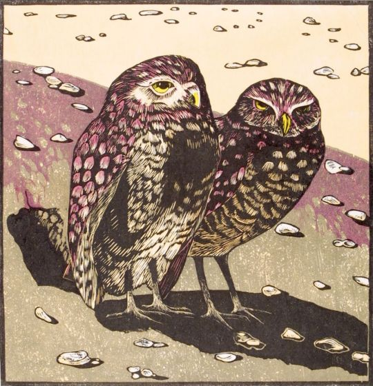 Burrowing Owls woodcut 1987 andrea rich.com