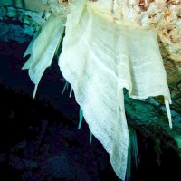 CAVES OF ABACO