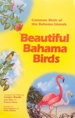 Beautiful Bahama Birds 1