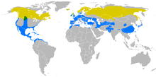 220px-Falco_columbarius_distribution_map
