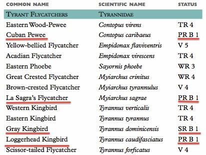 Tyrant Flycatcher Checklist jpg