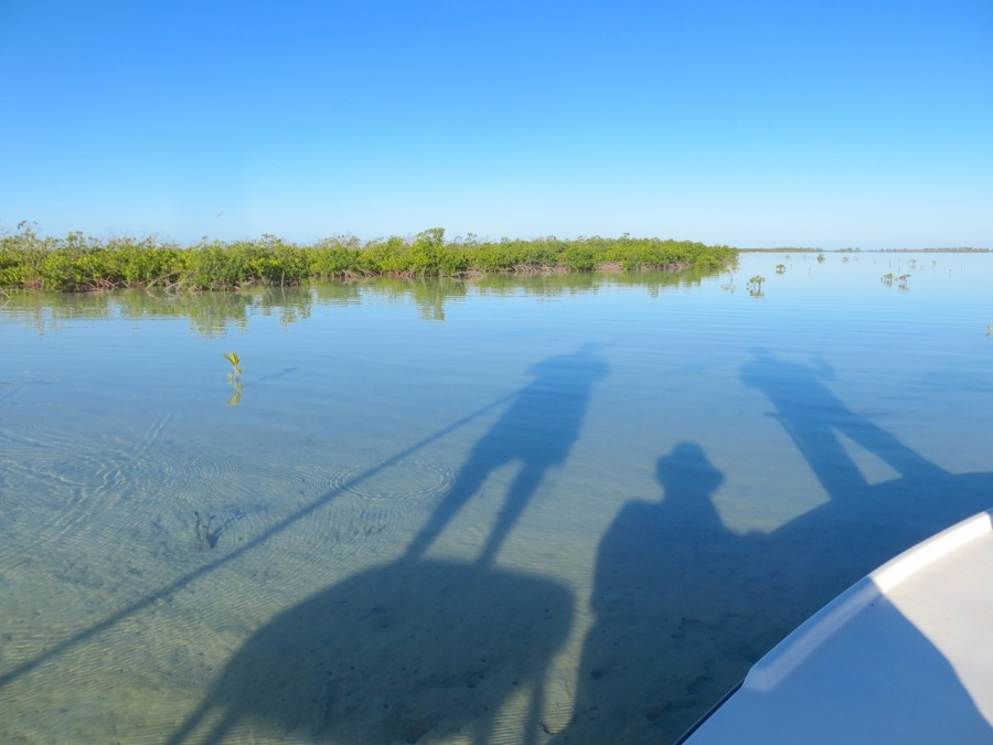 Shadows on the Flats, Crossing Rocks, Abaco