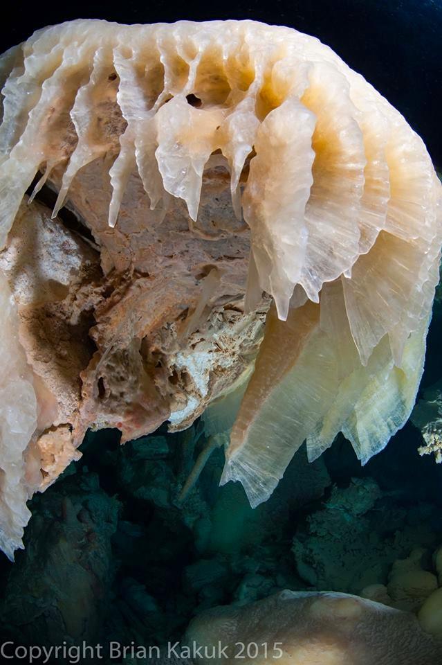 Ralph's Cave, Abaco (Brian Kakuk) 15.5 : 2