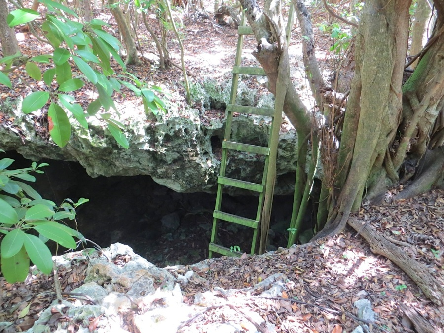Limestone Hole, Hole-in-the-Wall Abaco16