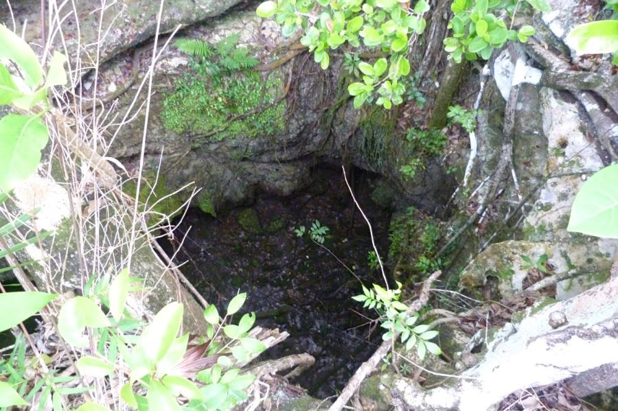 Limestone Hole, Delphi, Abaco (Keith Salvesen)