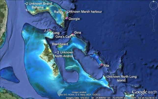 Bahamas Manatee Location Map - Aug 2015 (Felice Leanne Knowles)