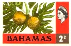 Breadfruit - Bahamas Stamp