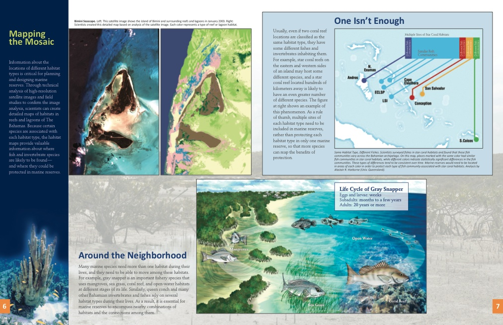 Guide to bahamas marine protected areas rolling harbour abaco marine protected areas bahamas 4 publicscrutiny Images