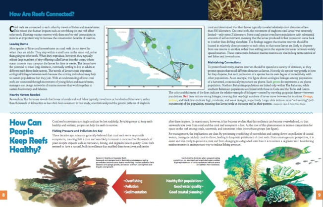 Marine Protected Areas Bahamas 5