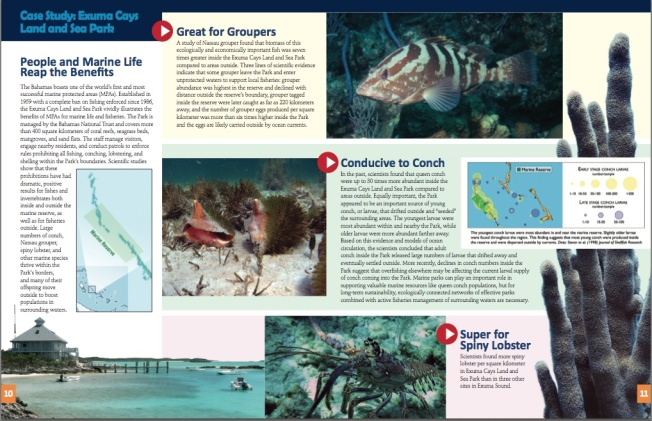 Marine Protected Areas Bahamas 6